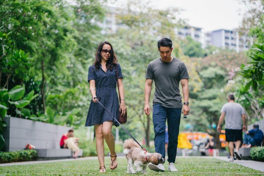 Stroll Around the Beautiful Parks - 5 Best San Jose Dating Ideas
