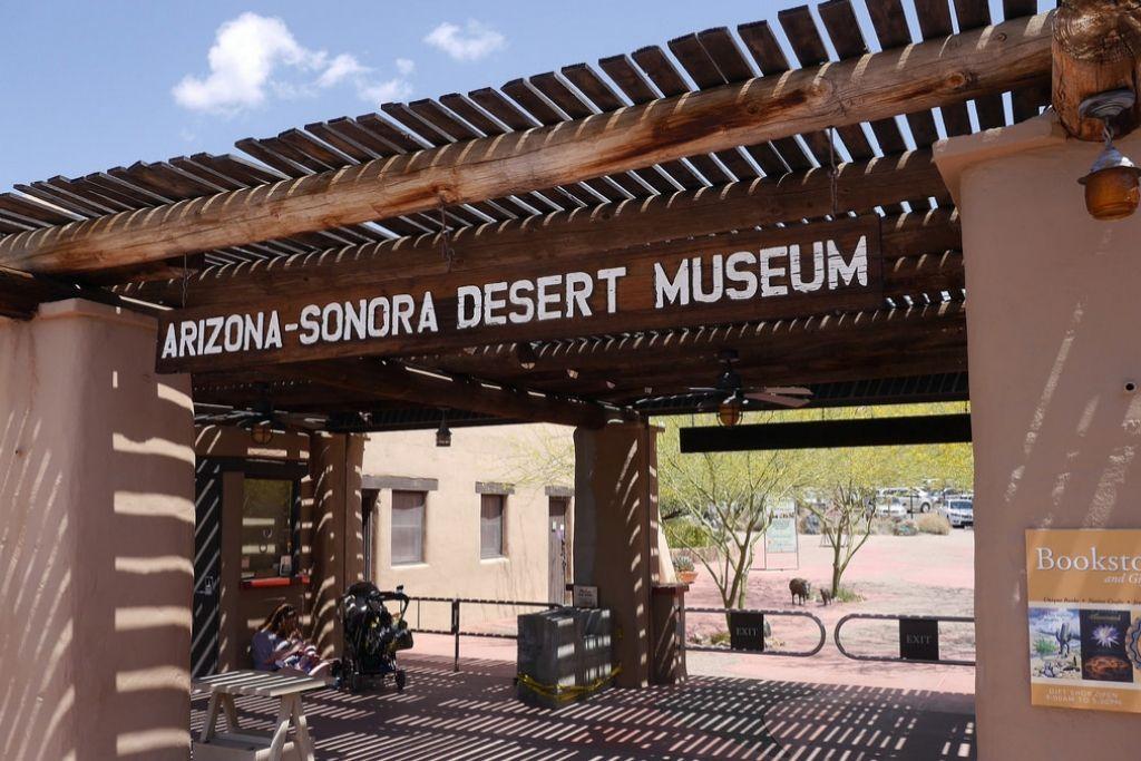 Visit Arizona - Sonora Desert Museum - Tucson Dating Ideas