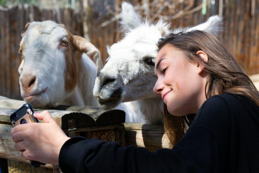 Visit Fresno Chaffee Zoo
