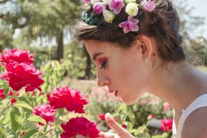 Visit the Mesa Community College Rose Garden